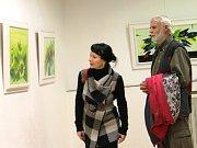 Výstava Ašota Arekaljana. Ilustrační foto.