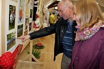 V EXPOZICI. Drmolice z Polešovic se pochlubily na výstavě fotografiemi ze společných setkání, pořadů a vystoupení na veřejnosti.