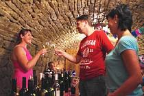 Příštím rokem stodesetiletý sklep v sousedství restaurace Koruna v Uherském Hradišti oslavil v sobotu své první desetiletí pod názvem Kamenný sklípek u Juráků.