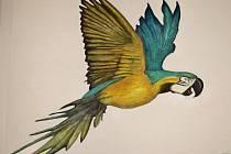 Obrazy ptáků zkrášlují turistickém centrum Velehrad ZDENĚK SKALIČKA  Velehrad – Každý výtvarník je vždy nadmíru spokojen, když může vystavovat svá díla na veřejnosti. Ještě větší radost má, když je o ně ze strany lidí zájem