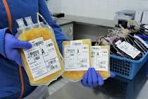 Uherskohradišťská nemocnice provedla první odběry rekonvalescentní plazmy a hledá další dárce.