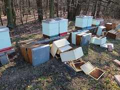 Včelař našel úly na zemi.