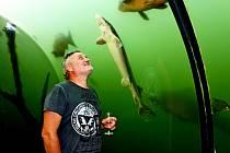 CESTOVATEL A FOTOGRAF. Vizovický Richard Jaroněk je milovník divočiny. Se žraloky strávil stovky hodin.