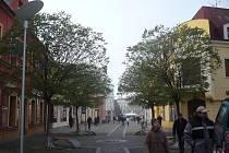 Strom v Havlíčkově ulici se stal terčem nepochopitelných spádů vandalů, kteří se do něj trefovali nožem.