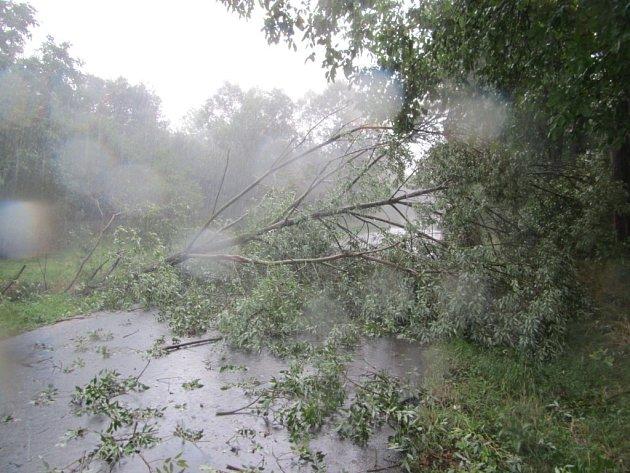 Desítky zásahů u zaplavených sklepů a popadaných stromů.