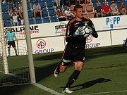 Milan Heča