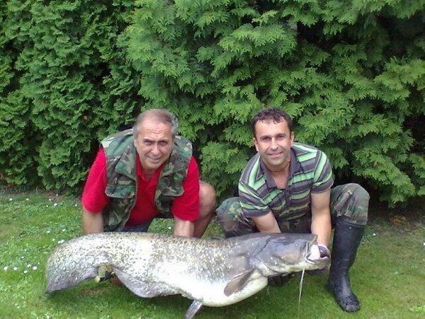 Soutěžní číslo 126 – Marek Hotař, sumec, 170cm, 32,5kg.