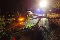 Řidiče ve Zlíně-Salaši překvapil strom ležící na komunikaci, narazil do něj.