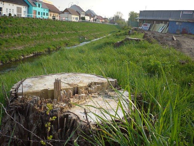 Stavba čističky v Březolupech je zahájena.
