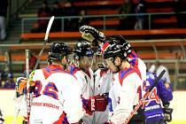 Hradišťští hokejisté se radují, druhá ligy je zachráněna.