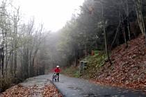 Nový povrch asfaltové cyklotrasy nedaleko státní hranice se Slovenskem na úpatí Velké Javořiny.