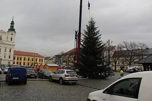 Stavění vánočního stromu na Masarykově náměstí