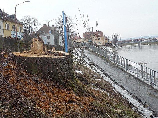 Kácení stromů na břehu Moravy v Uh. Hradišti v roce 2010. Ilustrační foto.