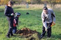 S výsadbou stromů pro Rochus pomohlo na dvě sta návštěvníků a skautský oddíl z hradišťské centrály Psohlavců.
