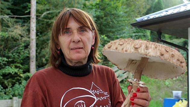 Milovníci hub věří, že rok 2020 nebyl pro pochoutky lesa posledním.