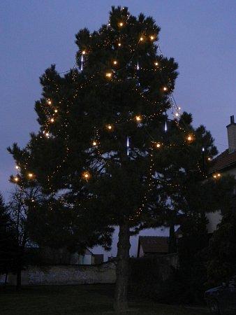 Vánoční strom vDolním Němčí.
