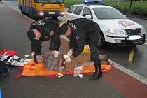 První pomoc poskytli zraněnému strážníci Městské policie.