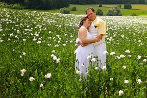 Fotosoutěž O nejkrásnější svatební pár 2017 – 8. kolo
