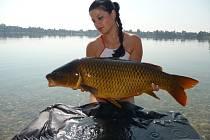 Vítězka fotosoutěže O nejlepší rybářský úlovek 2012/2013 - Eva Davidová, kapr, 87 cm a 11,7 kg.