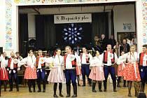 Hopsácký ples se v Horním Němčí konal poosmé.