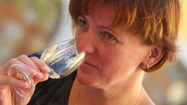 Slavnosti vína a otevřených památek 2013 v Uherském Hradišti.  Košt vín v sále Reduta.