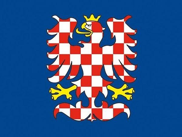 Kpoužívání vlajky vyvedené ve zlato-červené kombinaci vyzývá Moravská národní obec. Podle kritiků je ale platným symbolem bílo-červená orlice vmodrém poli.