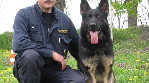 Čtyřletý policejní pes, německý ovčák, jménem Brutus.