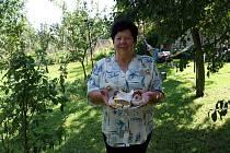 Autorka jablečného štrúdlu Jiřina Fujdiaková z Nivnice.