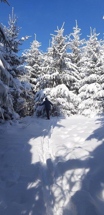 Běžkaři v bílé stopě pod Velkým Lopeníkem, v okolí Mikulčina vrchu a Vyškovce.