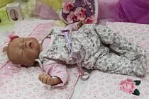 Nahlédnout do novorozeneckého oddělení realistických rebornovaných panenek, které byly k nerozeznání od miminek, jenž přicházejí na svět v našich porodnicích, mělo možnost od pátku do neděle dva a půl tisíce návštěvníků kulturního domu v Nedakonicích.