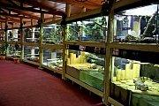 Dalším lákadlem pro veřejnost bude na Modré terárium se 120 živočichy. Ti budou obývat přízemí bývalého hotelu U Velehradu.