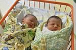 V měsíci květnu se stalo Porodnicko gynekologické oddělení v Uherskohradišťské nemocnici jedním z nejvytíženějších pracovišť. Na svět zde přišlo rekordních 170 dětí.