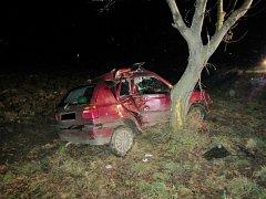 Po nárazu do stromu za Hlukem ve směru na Boršice u Blatnice byli zraněni dva spolujezdci.