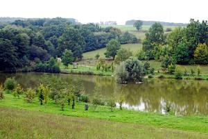 Nedachlebičtí se vrhli do obnovování rybníků i výsadby tradičních dřevin.