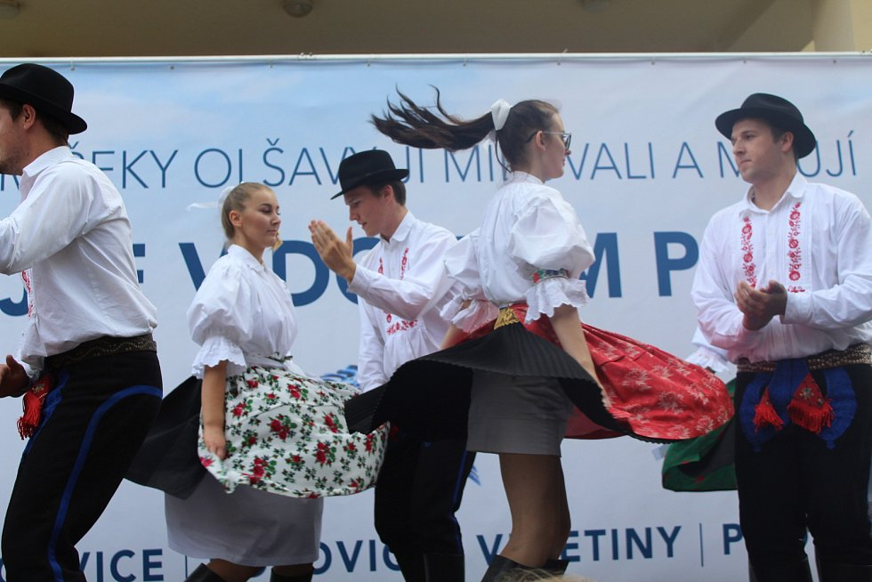Mirkoregiony se na Slováckých slavnostech vína a otevřených památkách