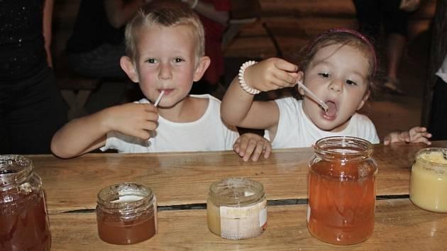 MEDOVÉ OPOJENÍ. V archeoskanzenu si v sobotu přijdou na své milovníci včelích produktů. Nebude chybět ani stloukání másla, medu lízání a košt medovin.