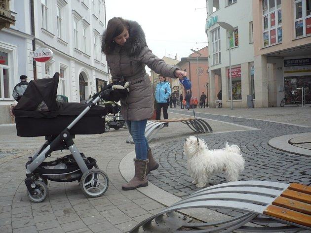 To, zda majitel odklidí po svém psovi hromádku exkrementů, záleží na jeho rozhodnutí. V případě nesprávném volby mu ale hrozí pokuta. Ilustrační foto.