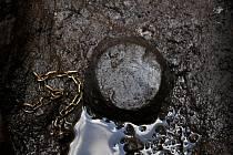 V uherskohradišťské ulici Dlouhá našli archeologové Slováckého muzea vzácné nálezy. Raritou byl kompletně zachovalý zlatý náramek.