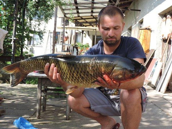 Soutěžní číslo 34 – Michal Tvrdý, amur, 77cm, nevážen.