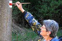 Eva Hohausová při obnově turistických značek v lesích.