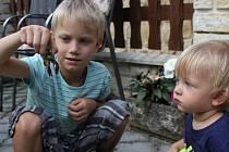 Několik kusů raků se podařilo zachránit na Smraďavce sedmiletému Ondrovi Polákovi.