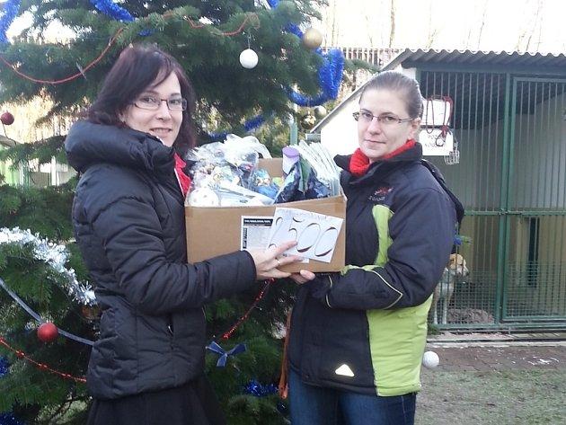 Pavlína Pazderková osobně předala výtěžek charitativní akce do útulku v Hodoníně.