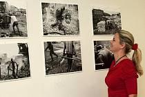 Výstavy v nemocniční galerii jsou určeny pro zdravotní personál hosty nemocnice i pacienty