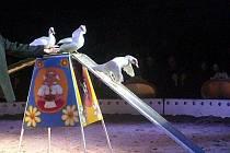 Cirkus Berousek Sultán si hradišťské obecenstvo získal dechberoucími kousky akrobatů i drezůrami mnoha druhů zvířat