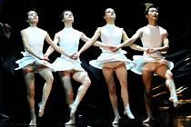 Balet Labutí jezero. Ilustrační foto.