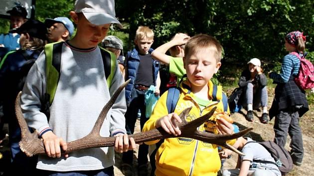 Devátého ročníku Den s Lesy České republiky se zúčastnilo 183 dětí z pěti základních škol v působnosti Lesní správy Buchlovice.