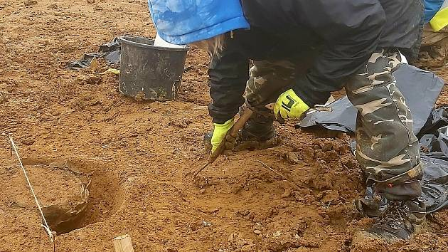 Po krátké zimní přestávce, kdy mrazivé teploty na chvíli přerušily práce na záchranném archeologickém výzkumu na stavbě dálnice D55 v úseku Babice-Staré Město, již archeologové hlásí další nálezy.