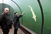 Losování pod vodní hladinou Živé vody obstaral potápěč