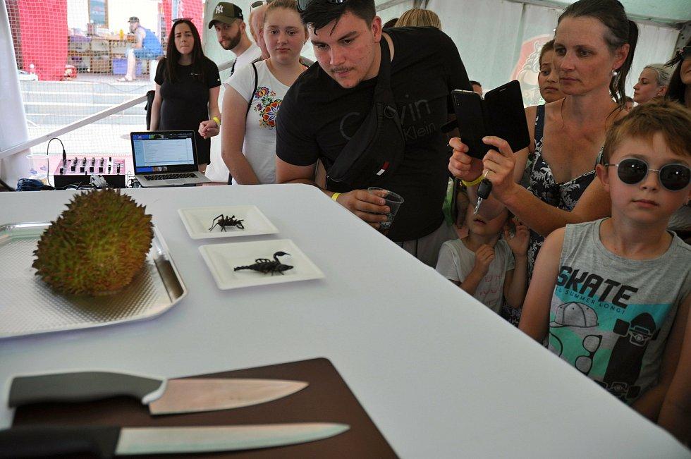 Návštěvníci nedělního programu (9. srpna 2020) gastrofestivalu v Kunovicích na Uherskohradišťsku si prohlížejí extrémní pokrmy připravené pro exhibici Maxijedlíka Jaroslava Němce z Bystrého u Poličky.