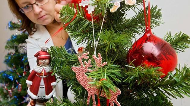 Vánoční stromeček. Ilustrační foto.